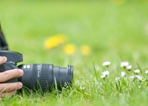 enfant-nature-appareil-photo