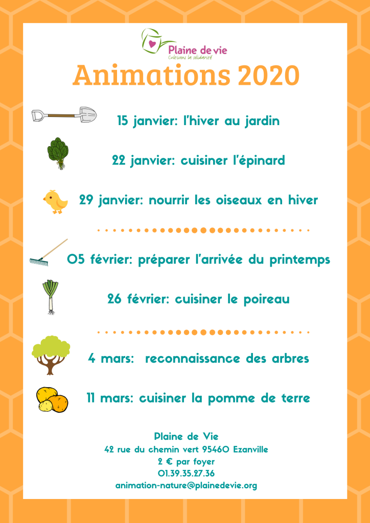 Animations 2020